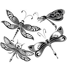 Dragonfly set vector image vector image