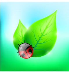Leaves with Cute Ladybug vector image vector image
