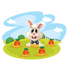 A rabbit at the farm with carrots vector