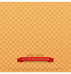 background texture wafer vector image vector image