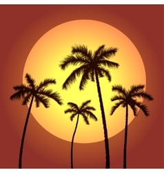 palms and sunset vector image vector image