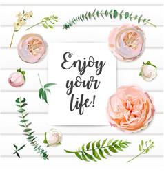 floral summer seamless pattern pink garden rose vector image
