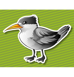 Gray bird vector image