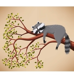 Raccoon on the tree vector
