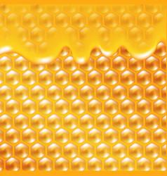 Honey poster vector
