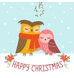 Christmas couple of owls vector