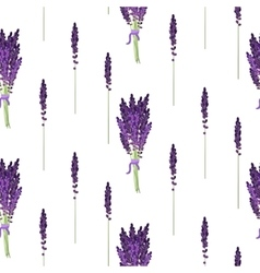 Lavender seamless pattern provence violet bouquet vector