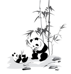 panda and baby eat a bamboo vector image vector image