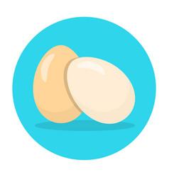 Eggs flat icon chicken egg vector