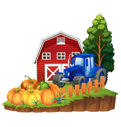 farm scene with blue tractor and pumpkins vector image