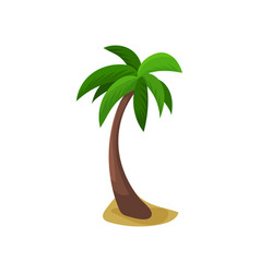 palm tree colorful vector image