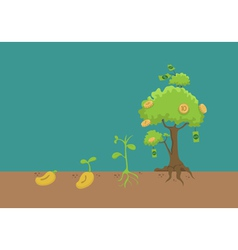 Evolution of money tree vector