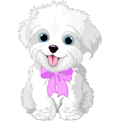 White lap-dog vector