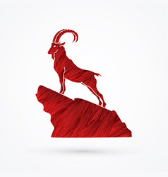 ibex standing on the cliff vector image