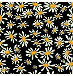 Flower camomile seamless pattern background vector image