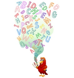 Parrot reading english book vector