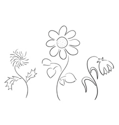set of black silhouettes - flowers vector image vector image