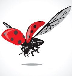 lady bug graphic a vector image