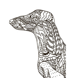Dachshund head coloring book for adults vector