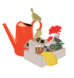 garden tools and flowers vector image