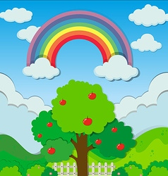 Rainbow over the apple tree vector image