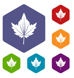 Currant tree leaf icons set hexagon vector