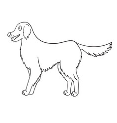 cute contour golden retriever isolated on white vector image