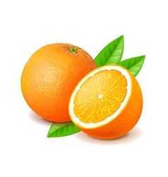 Orange and slice isolated on white vector image