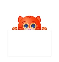 Red cat with blank sign vector image
