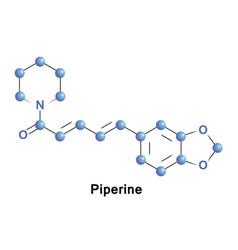 Piperine alkaloid pepper vector