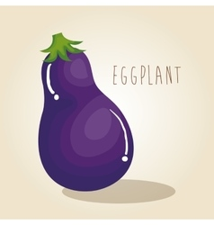 Eggplant fresh vegetable icon vector