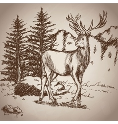 Deer hand drawing landscape vintage vector