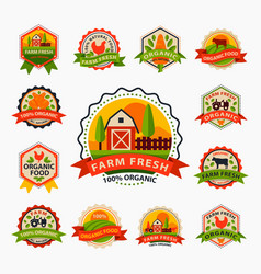flat style of bio organic eco healthy food label vector image