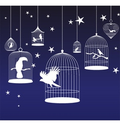 background with birds cages vector image