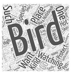 Bird watching in arizona word cloud concept vector