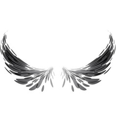 black wings on white vector image vector image