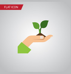 isolated plant flat icon care element can vector image vector image