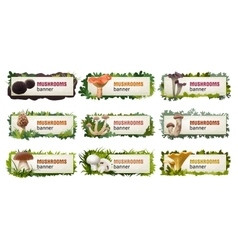 Set of delicious mushroom banners vector image