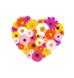 Heart made of colorful daisies vector