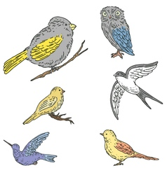 Set of vintage birds vector