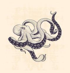 octopus vintage vector image