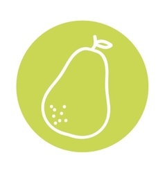 Avocado vegetable health icon vector