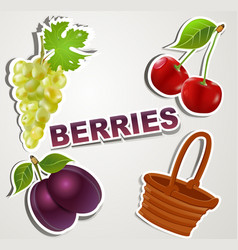 Set of icons berries vector