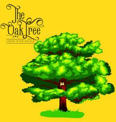 Cartoon isolated oak summer tree on background vector