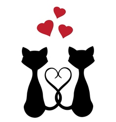 Cats hearts vector