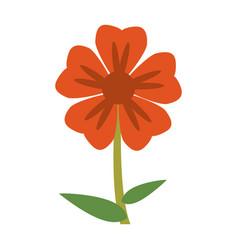 geranium flower natural image vector image vector image