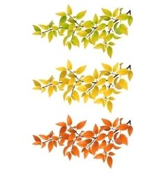 Set branches with autumn leaves vector