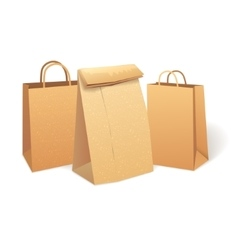 Shopping paper bag eco market promo vector