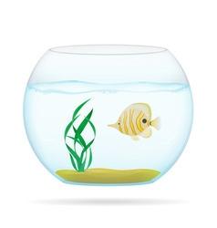 aquarium with fish 03 vector image