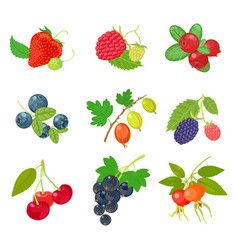 berries isolated set icon on white background vector image